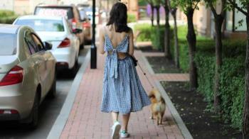 Los dueños de animales domésticos de Alcobendas deben limpiar los orines de sus mascotas con agua o productos especiales