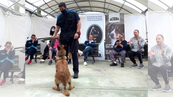 Los alumnos con discapacidad funcional pudieron disfrutar de la compañía de los perros e interactuar con ellos