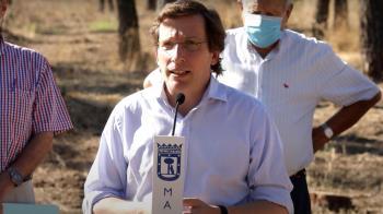 Almeida ha presentado el Plan de Acción y anuncia la plantación de 100.000 ejemplares
