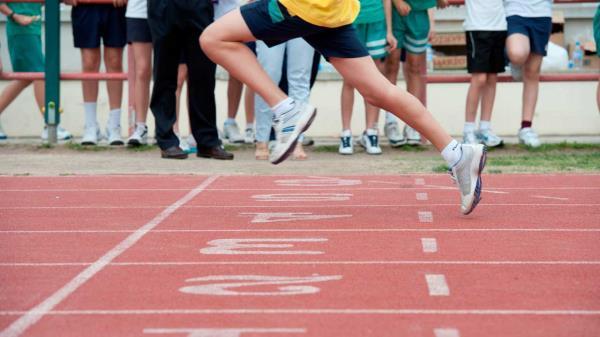Pozuelo no cobrará enero a los usuarios de escuelas deportivas y abonados Multideporte