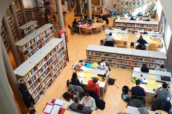 Préstamo especial de verano, en la Biblioteca Luis de Góngora
