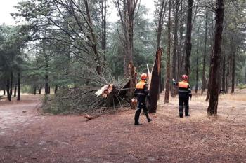 El trabajo en conjunto de los voluntarios, los bomberos y la Policía de Villaviciosa dejan imágenes de los desperfectos causados por las lluvias