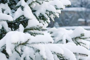 Recibió un total de 2.800 llamadas y realizó 375 intervenciones relacionadas con las nevadas sufridas
