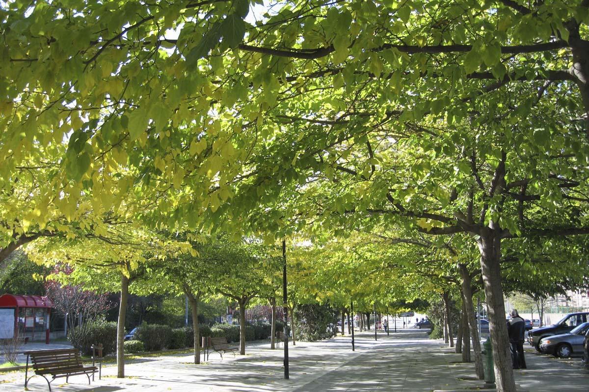 El Laboratorio Municipal de Coslada presenta un informe sobre la atmósfera