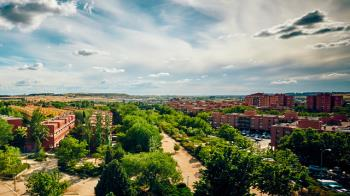 """El reconocimiento """"Tree City of the World 2020"""" es entregado por la FAO y la Arbor Day Foundation"""
