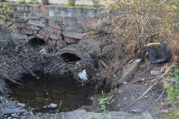 Esta plataforma ha presentado sus propuestas de mejora ecológica del entorno fluvial a la concejalía de Medio Ambiente