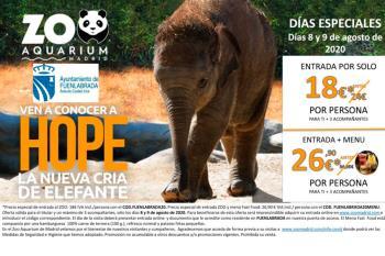 Si eres de Fuenla, el sábado 8 y domingo 9 de agosto podrás disfrutar de descuentos únicos en el zoo