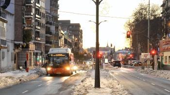 Desde el Ayuntamiento felicitan el trabajo realizado para recuperar la normalidad en el transporte